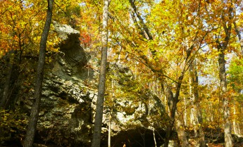 001-0000-Golden display of fall leaves over bluff