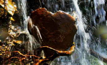 001-0819-HeartofGoldonWaterfall